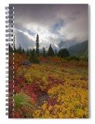 Unicorn Peak Spiral Notebook