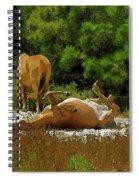 Unimaginable Joy Spiral Notebook
