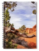 Unique Desert Beauty At Kodachrome Park In Utah Spiral Notebook