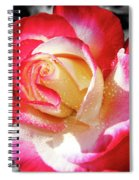 Unity Rose Spiral Notebook