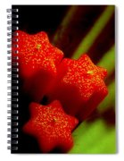Unlighted Candles Spiral Notebook