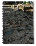 Unsettling Ground Spiral Notebook