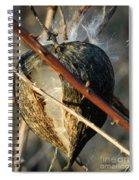 Unspent Milkweed Spiral Notebook