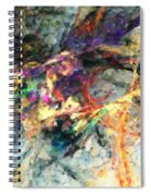 Untitled 01-14-10-a Spiral Notebook
