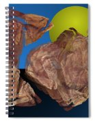 Untitled 01-16-10 Spiral Notebook