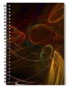 Untitled 12-01-09-a Spiral Notebook