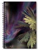 Untitled 12-05-09 Spiral Notebook