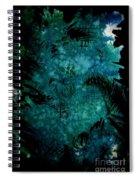 Untitled-175 Spiral Notebook