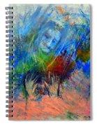 Untitled 2 Spiral Notebook