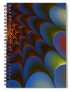 Untitled 3-23-10 Spiral Notebook