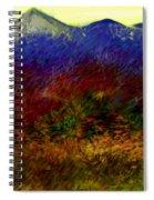 Untitled 4-11-10 Spiral Notebook