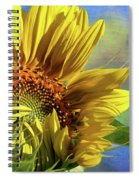 Unveiling Spiral Notebook