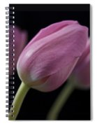 Up Front Spiral Notebook
