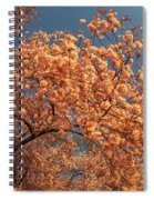 Up To The Cherry Flowers Spiral Notebook