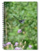 Up, Up And Away-black Swallowtail Butterfly Spiral Notebook
