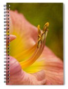 Uplifting Lily Spiral Notebook