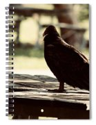 Upon The Look Spiral Notebook