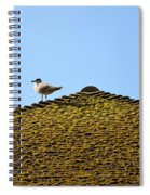 Upon The Roof Spiral Notebook