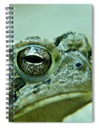 Upset And Dissatisfied Spiral Notebook