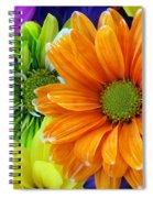 Upstaged By Orange Spiral Notebook
