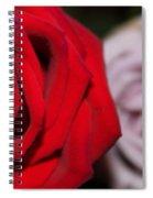 Upstaged Rose Spiral Notebook