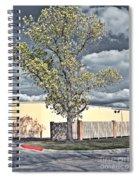 Urban Cottonwood Spiral Notebook