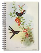Urochroa Bougieri Spiral Notebook
