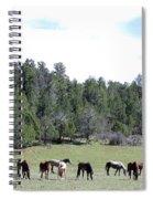 Utah 10 Spiral Notebook