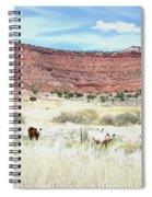 Utah 7 Spiral Notebook