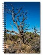 Utah Juniper Spiral Notebook