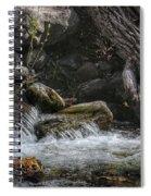 Utah Stream Spiral Notebook