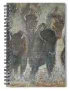 Uttc Buffalo Mural Center Panel Spiral Notebook