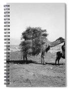 Uzbekistan: Caravan, C1910 Spiral Notebook