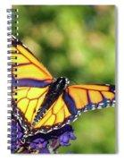 V Shaped Monarch  Spiral Notebook