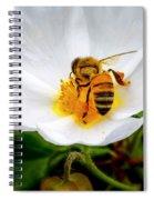 Vacaville Honey Bee Spiral Notebook