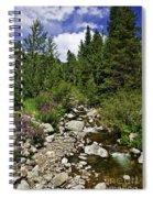 Vail Stream In The Summer 2 Spiral Notebook
