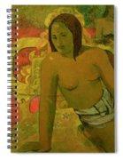 Vairumati Spiral Notebook