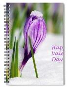 Valentines Day Crocuses Spiral Notebook