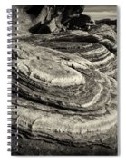 Valley Of Fire 3158 Spiral Notebook
