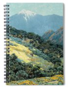 Valley Splendor Spiral Notebook