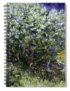 Van Gogh: Lilacs, 19th C Spiral Notebook