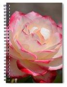 Vanilla Cherry Rose Spiral Notebook