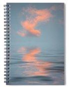 Vapor 2 Spiral Notebook