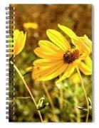 Variableleaf Sunflower Spiral Notebook