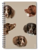 Variations Of A Spaniel Spiral Notebook
