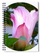 Variegated Hibiscus Flower In Circle Spiral Notebook