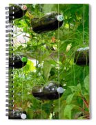 Vegetable Growing In Used Water Bottle 4 Spiral Notebook