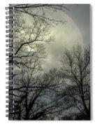 Veil Of Lunacy  Spiral Notebook