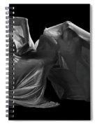 Veiled Spiral Notebook