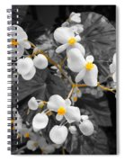 Veins Of Gold Spiral Notebook